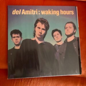 "Del Amitri: ""Waking hours"" (1989)"