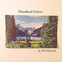 "Nick Heyward: ""Woodland echoes"" (2017)"